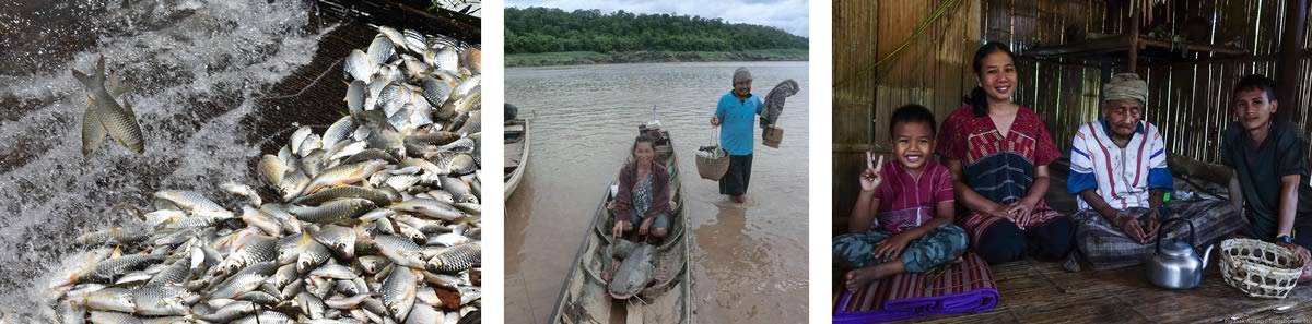 Electrofishing on the River Mekong